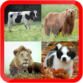 Learn Animals for Kids Free