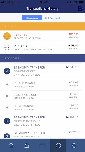 SteadiPay - Optimizing Cash and Credit Management - screenshot