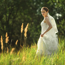 Wedding photographer Aleksandr Potemkin (SANCHO-BRODA). Photo of 18.12.2015
