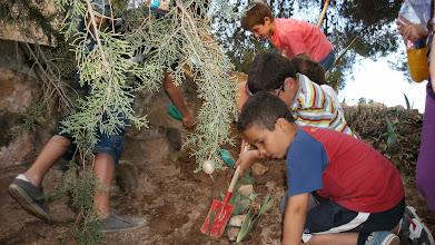 Photo: El grup de jardiners va fer una gran plantació...