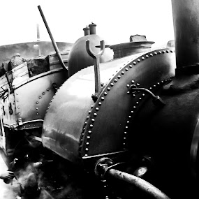 Toy train just darjeeling  by Hrijul Dey - Transportation Trains ( engine, vintage, steam train, smoke, heritage, black and white, toy, train,  )