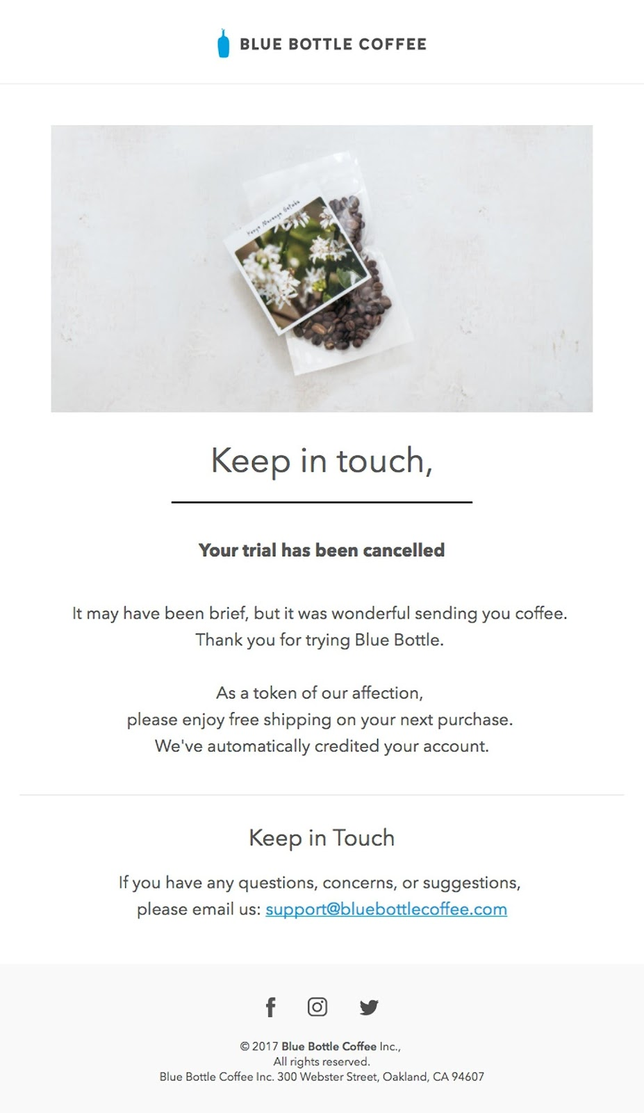 Blue Bottle Coffee email example