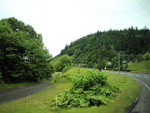 北海道中央バス「ドリーミントオホーツク号」 3948 車窓_04
