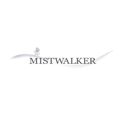 MISTWALKER CORPORATION avatar image