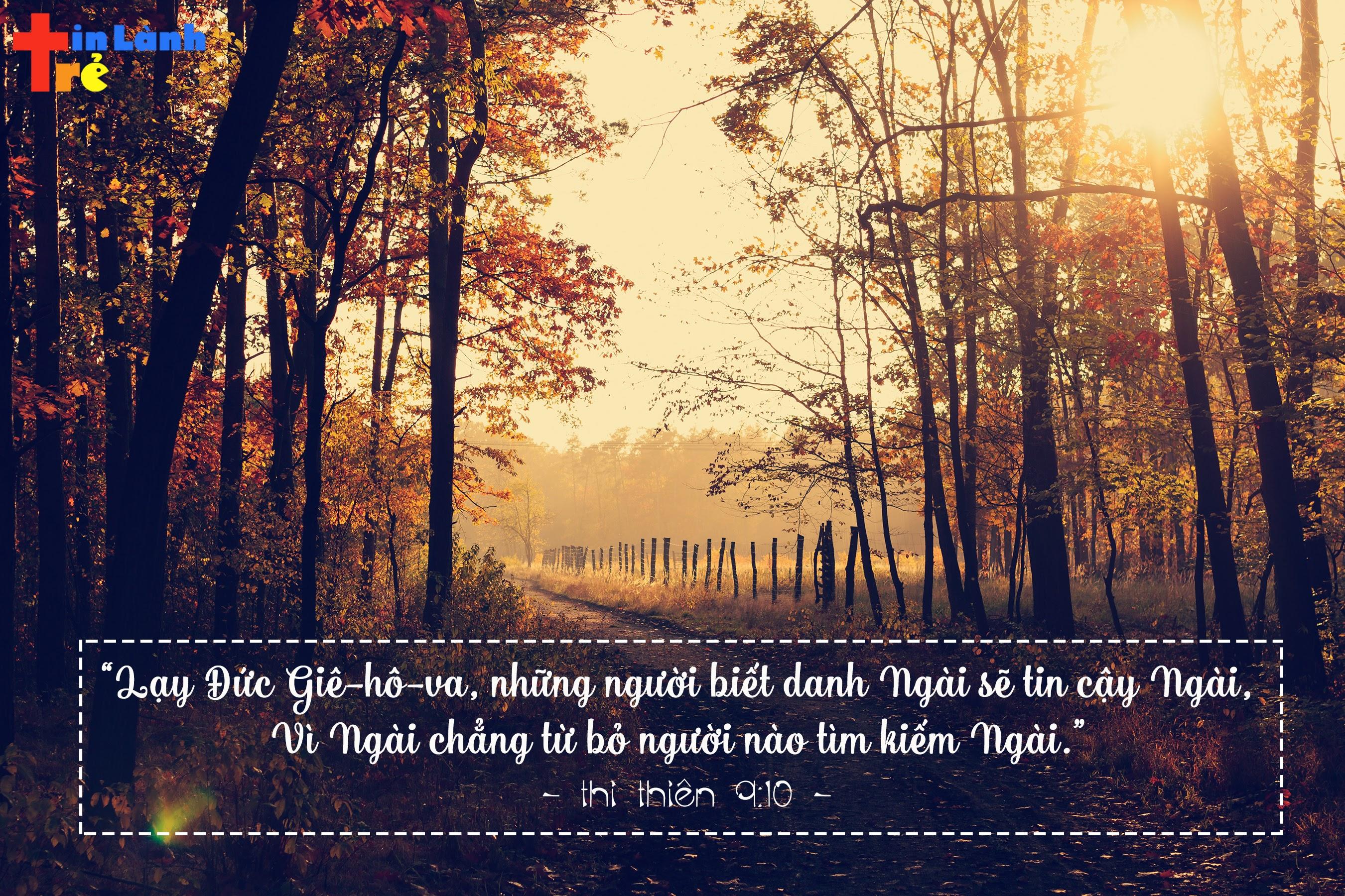 """""""Lạy Đức Giê-hô-va, những người biết danh Ngài sẽ tin cậy Ngài, Vì Ngài chẳng từ bỏ người nào tìm kiếm Ngài."""" - Thi Thiên 9:10"""