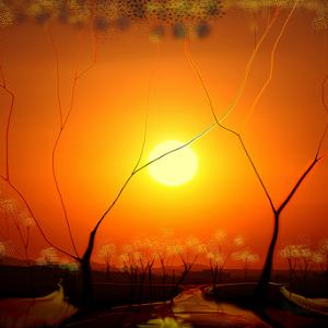 desierto y sol sin seud.jpg