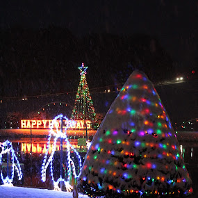 Christmas Display  by H Scott Burd - Public Holidays Christmas ( bernville, pennsylvania )