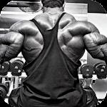 Bodybuilding Workout 2015