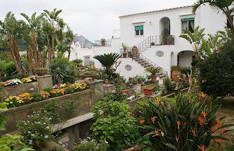 Photo: Garten auf Capri