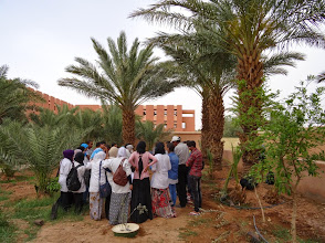 Photo: Earth Day 20 April 2015: together with students of high school Sidi Ahmed Benaceur, teachers Adil and Mohammed, we planted trees in Zagora.
