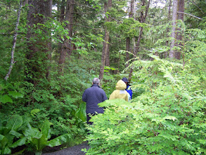 Photo: Some of us went to the rain forest near Juneau (courtesy of Harold Holcomb, hereafter designated by HEH)