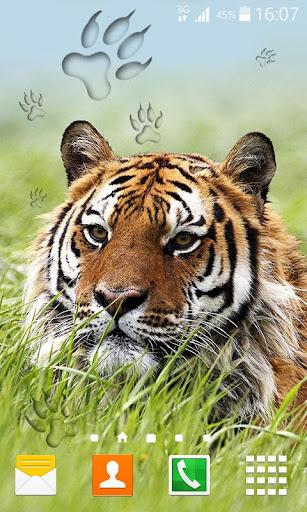 老虎動態壁紙