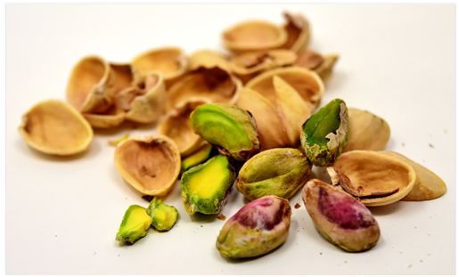 Causes of Pistachio Poisoning in Dogs