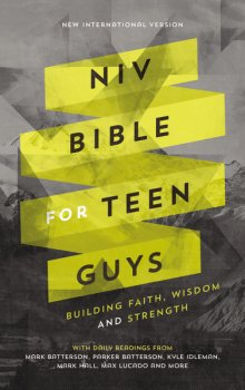 NIV Bible for Teen Guys.jpg