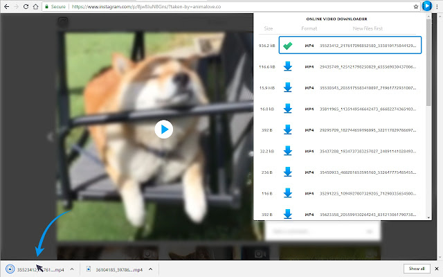 Online Video Downloader for FB