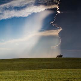 Divided Clouds on the Prairie by Craig Lybbert - Landscapes Prairies, Meadows & Fields ( field, dark clouds, farm, wheat, clouds, prairie )