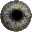 Eye Diagnosis icon