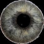 Eye Diagnosis icon