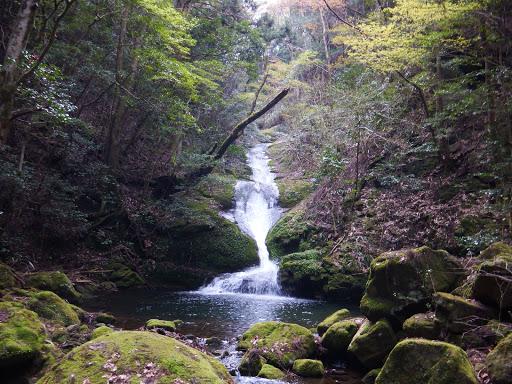 南松の滝2