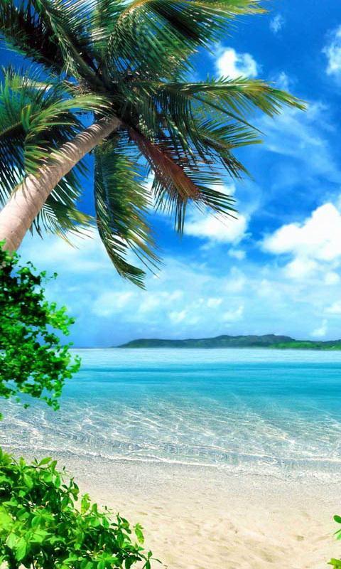 Tropical Beach Live Wallpaper Screenshot