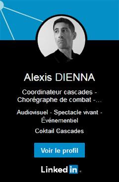 Profil du régleur et chorégraphe de cascades Alexis DIENNA sur LinkedIn.