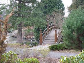 Photo: Breslau, Japanischer Garten