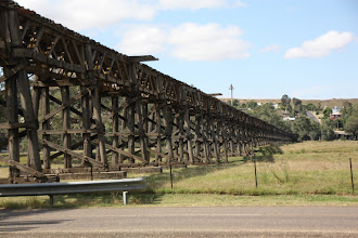 Photo: Year 2 Day 227 -  Trestle Bridge in Gundagai