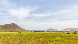 La Playa de Los Genoveses se encuentra a dos kilómetros del cortijo Las Chinqueras. Foto de Chema Artero.