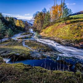Høsttid og elv by Dag Hafstad - Uncategorized All Uncategorized