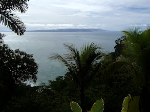 Photo: View of the Golfo Dulce from Bosque del Cabo