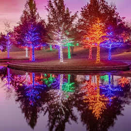 Vitruvian Park by Bert Templeton - City,  Street & Park  City Parks ( red, reflectiion, pink, green, blue, yellow, addison, texas, vitruvian, park )