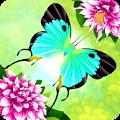 Flutter: Butterfly Sanctuary download