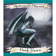 Jolly Pumpkin Madrugada Obscura Dark Dawn Stout