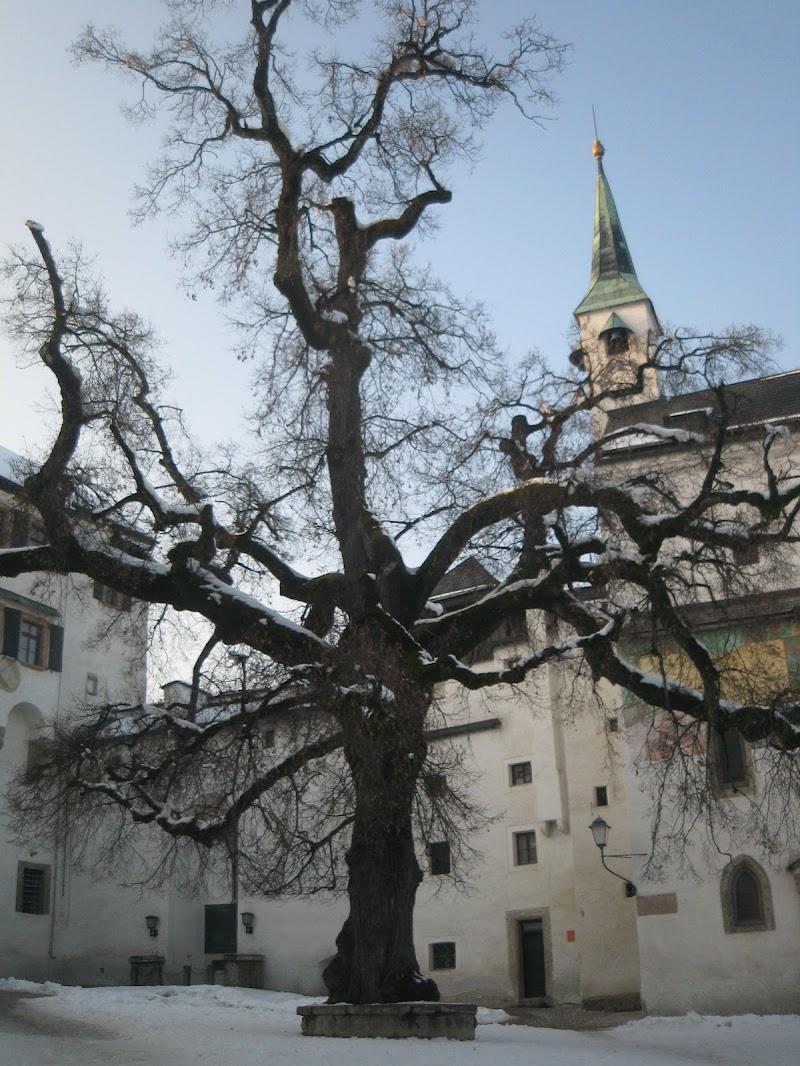 Salisburgo in bianco  di Giuly94
