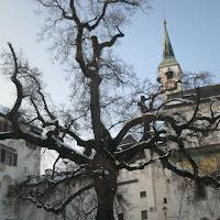 Salisburgo in bianco