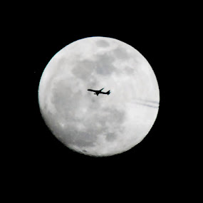Fly Me to the Moon by Barb Moore - Transportation Airplanes ( airplane, full moon, circle, pwc79, , color, colors, landscape, portrait, object, filter forge, silhouette, air, transport )