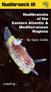 Nudibranch ID EAtlantic Med - náhled