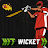 Hit Wicket Cricket 2018 - World Cup League Game logo