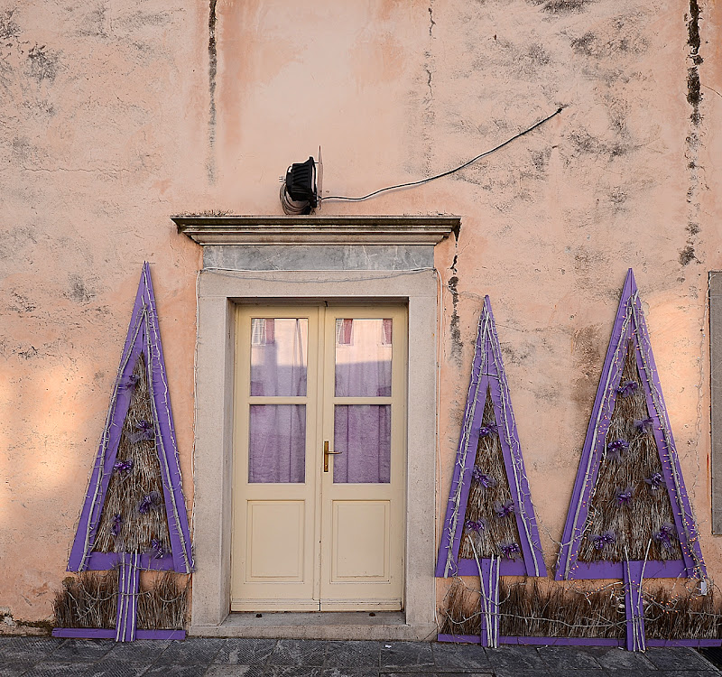 ingresso al palazzo del rosa e del viola di nicoletta lindor