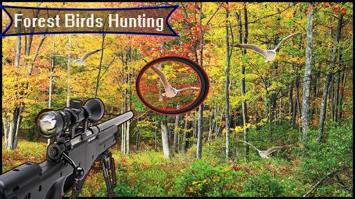 Télécharger Forêt 3D - Chasse aux oiseaux - Tireur d'élite APK MOD (Astuce) screenshots 4