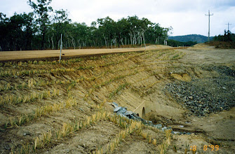 Photo: AUS-HYDR07 - Australia this large culvert is now protected by vetiver