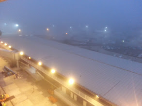 Photo: Very foggy morning at the end of the New Year's Cruise on the ms Ryndam.