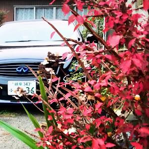 スカイラインクーペ  CKV36のカスタム事例画像 鬼ちゃん(永遠の3歳児)さんの2018年11月30日07:08の投稿