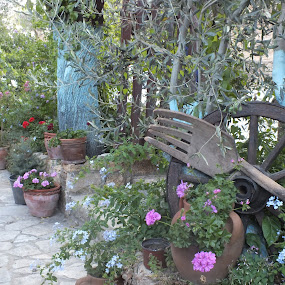 Garden via Flowers by Halime Pelitçi - Nature Up Close Gardens & Produce ( turkey, flowers, garden )