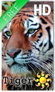 Tiger Live Wallpaper v1.1