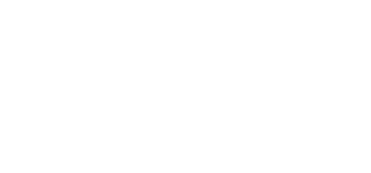 Berkhamstead_Executive_Cars_Logo_WO