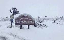 Welcome Sign to Joshua Tree, California with Snow
