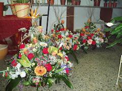 Visiter Flors Enric