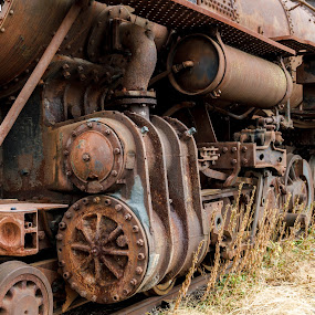 Abandoned steam powered locomotive. by Paul Krug - Transportation Trains ( nobody, old, technology, steam train, ruin, equipment, transportation, travel, rusty, roanoke, close, metal, power, train, 1151, virginia, industry, engine, scrap, museum, heavy, system, railway, antique, abandoned, stream, america, railroad, vehicle, retro, object, landscape, iron, transport, coal, boiler, rust, closeup, vintage, wreck, obsolete, track, steel, up, broken, history, industrial, locomotive, south, steam )