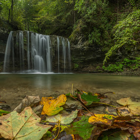 Peračica waterfall by Bor Rojnik - Landscapes Waterscapes ( water, autumn leaves, autumn, green, waterfall, leaves )